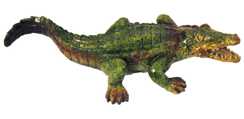 ALLIGATOR POLY 7