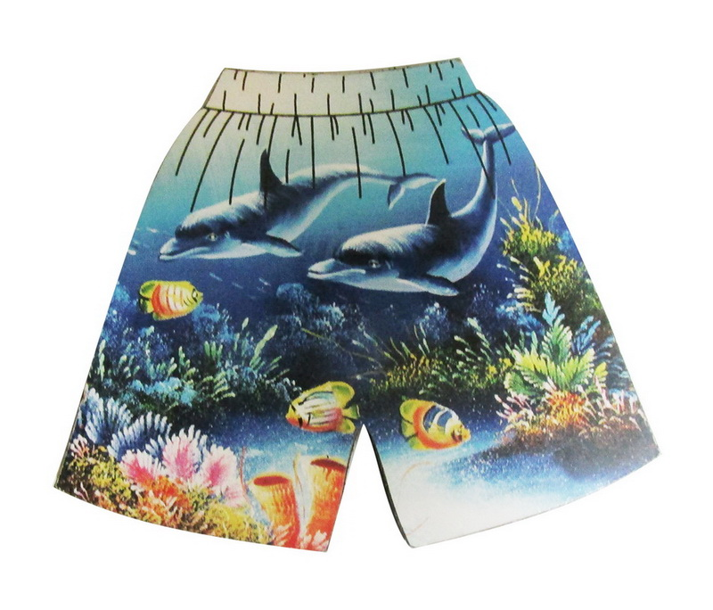 MAGNET POLY SHORTS DOLPHINS * UOM: each (ea)* Minimum Order: 24