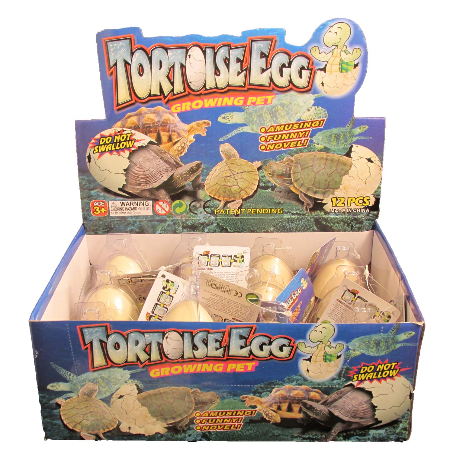 C/O-TOY-MAGNETic Tortoise Egg H * UOM: DZ * Minimum Order:1