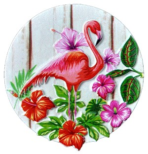 MAGNET POLY DECAL FLAMINGO ROUND  each (ea) * 240 *CASE OF 240