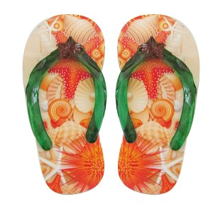 "MAGNET POLY-SANDAL SHELLS 4"" * UOM: PC * Minimum Order:6"