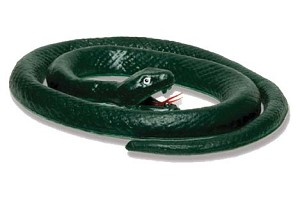 C/O-TOY-PVC-Snake in Box * UOM: DZ * Minimum Order:1